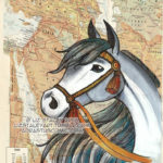 The Story Behind The Horses Of The World