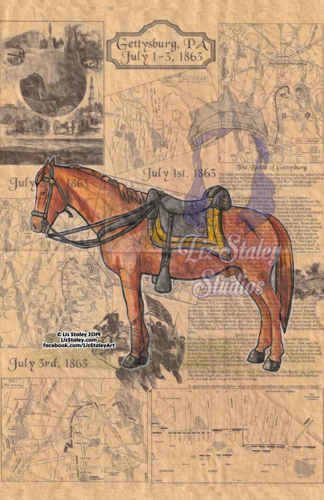 Confederate Horse