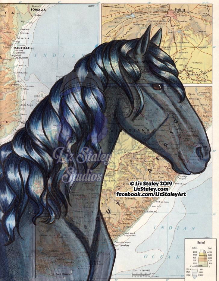 Vlaamperd Horse