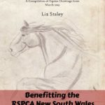Benefitting RSPCA New South Wales - PDF Equine March Sketchbook with Artist Notes