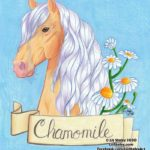 Video of the Creation of Chamomile