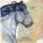New Horses of the World: The Ardennes Draft Horse!