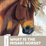 What is the Misaki Horse? Meet a Japanese National Natural Treasure!