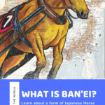 What is Ban'ei? Learn about this Japanese Horse Race