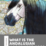 What is the Andalusian Horse? History and Facts about the Andalusian Breed