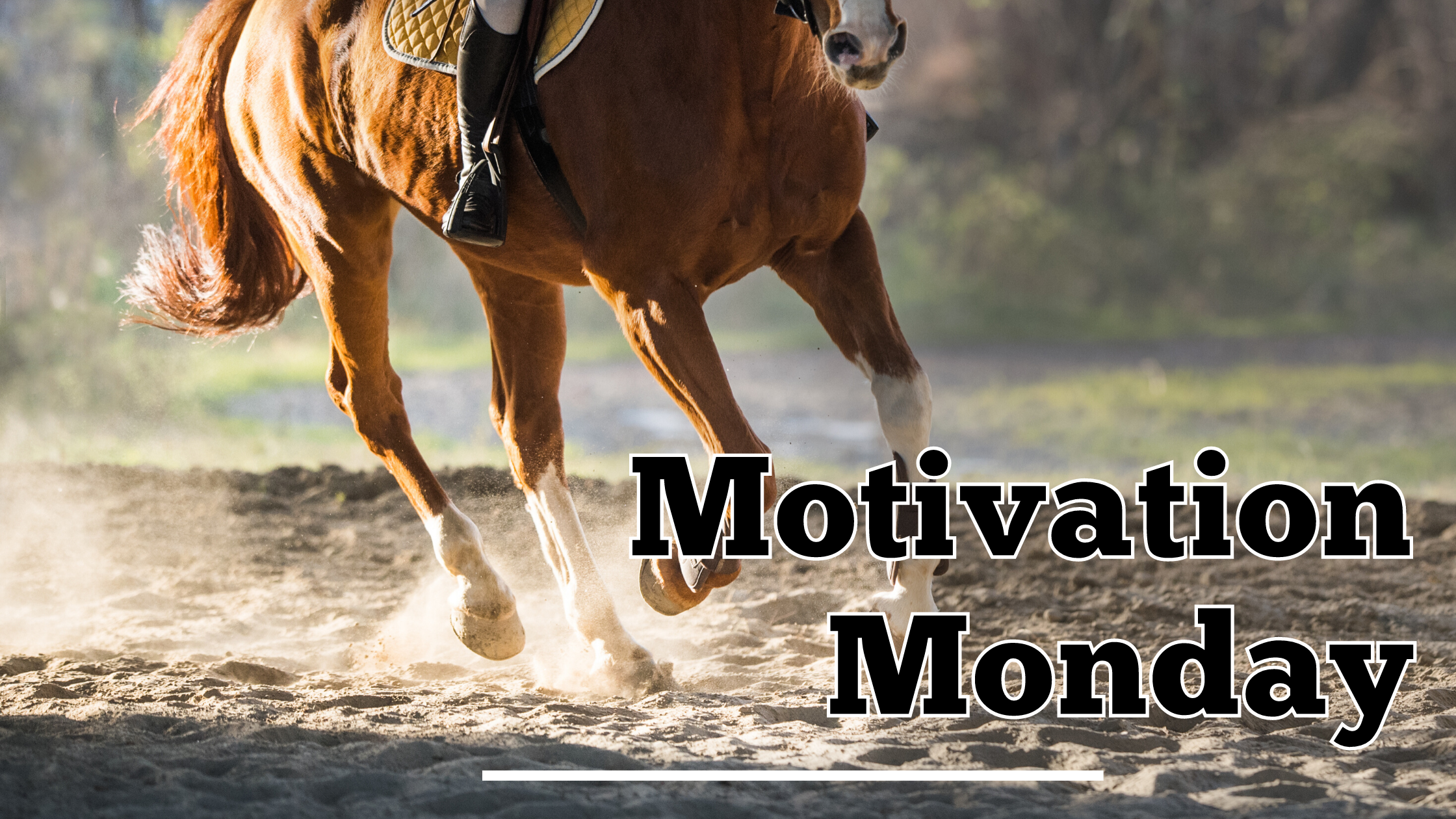 Photo of a chestnut colored horse being ridden in a sand arena, with the words Motivation Monday in the lower right corner