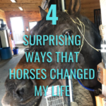 Four Surprising Ways that Horses Changed My Life