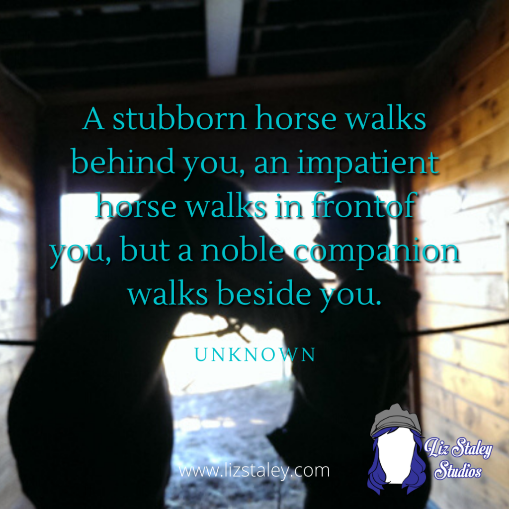 "Photo of a woman standing with a horse, looking at each other. The photo is in silhouette. Text on the photo reads ""A stubborn horse walks behind you, an impatient horse walks in front of you, a noble companion walks beside you."""